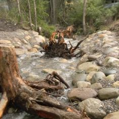Able Creek