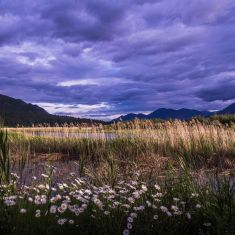 Landscape Category 3rd Place  Photographer Gayle Dougall