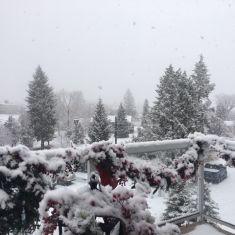 First Snow - Dec 19, 2019