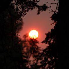 Sun reflecting BC wildfires Photo by Hilda Jensen